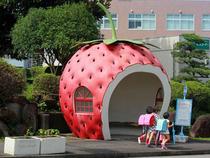 Những trạm xe buýt hình trái cây dễ thương ở Nhật