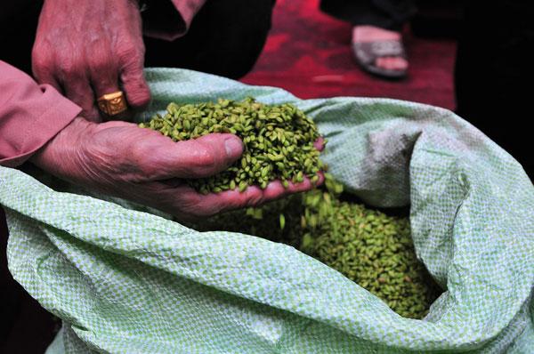 Sau đó phải sàng sẩy để lựa lấy những bông lúa non mới đủ tiêu chuẩn để làm cốm ngon