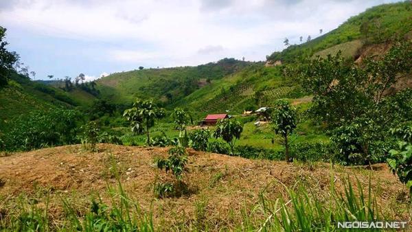 Những ngôi nhà bưng ván nằm ngay dưới chân núi. Ảnh: Hoàng Thương.