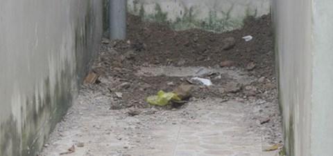 Vạch trần tội ác giết con chôn xác trong nhà