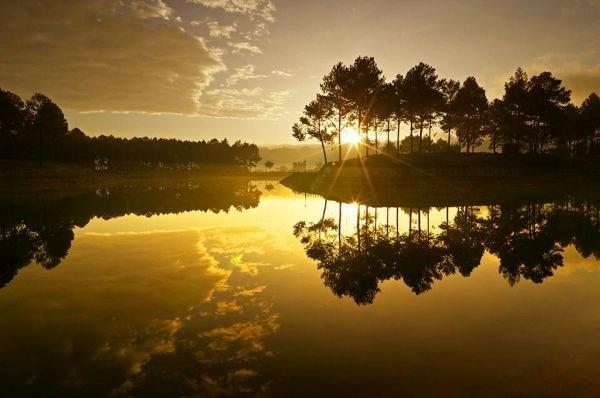 Rừng thông bạt ngàn soi bóng xuống hai bờ hồ khiến khung cảnh thật đẹp. Ảnh: Bizlive.