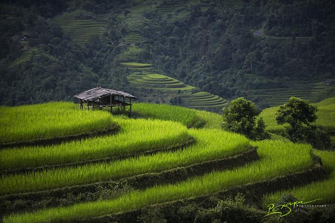 Vẻ đẹp giản dị của Việt Nam lên báo Anh