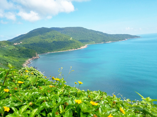 Sơn Trà nằm cách trung tâm thành phố 10 km, Sơn Trà nằm ở phường Thọ Quang, quận Sơn Trà, có diện tích 4.439 ha đất liền. Ảnh: Hoàng Thương.