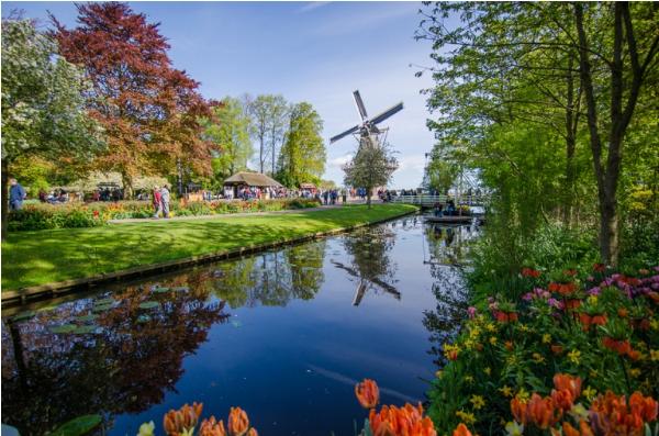 'Thiên đường' mùa xuân tại Keukenhof