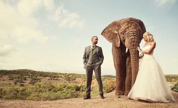Những bức ảnh cưới vượt qua sợ hãi của cô dâu, chú rể 2