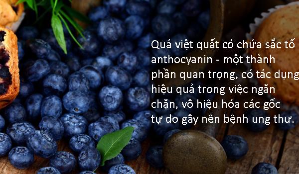 10-loai-thuc-phm-chong-tia-cuc-tim-dau-bang