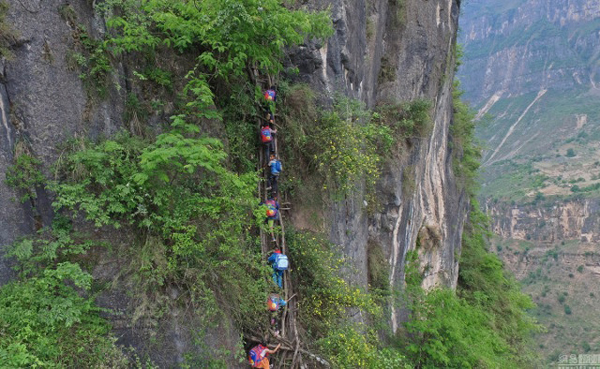 Every day the 15 children that live at Atule'er Village in southernmost Sichuan must climb up and down a set up 17 ladders placed against an 800 meter tall cliff in order to go to school, NetEase reports.
