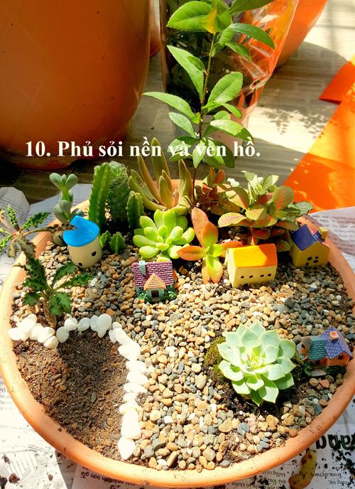 co-gai-8x-sai-gon-huong-dan-lam-vuon-cay-mini-doc-dao-10