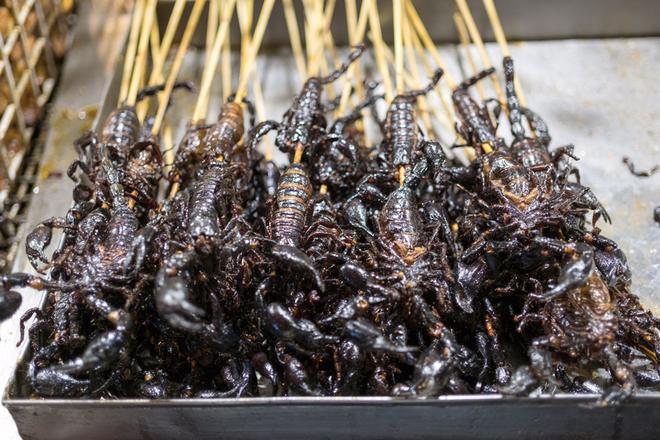 Những món ăn từ côn trùng ở miền Nam