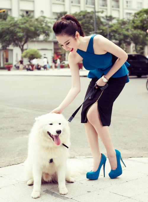 Nếu nhà bạn có nuôi một chú cún cưng, hãy giành phần dắt chó đi dạo mỗi tối để tiêu đốt 100 calo sau 26 phút.