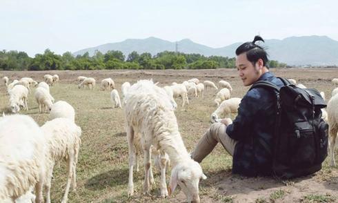 Đồng cừu ngút ngàn như trời Âu ngay gần Sài Gòn
