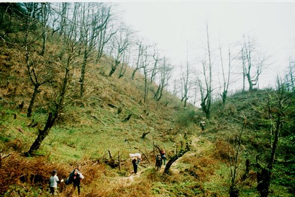8-cung-duong-phuot-trekking-dep-nhat-viet-nam-2