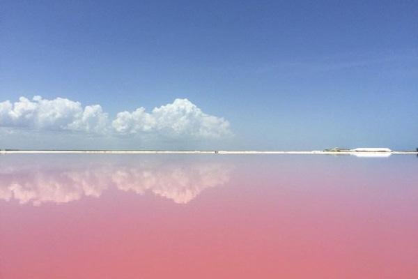 Sau khi bị những con sóng đánh vỡ và dưới tác động xói mòn theo thời gian, vỏ sò hồng hòa lẫn cùng những mảnh san hô tạo thành bãi cát nhuộm hồng tươi thắm, mà đôi khi, ngay cả nước biển sát bãi cát cũng có sắc hồng ấn tượng.