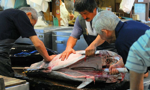 Đồ tươi ngon hết sảy ở khu chợ cá lớn nhất thế giới