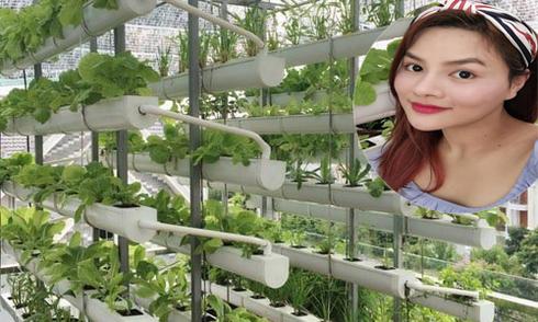 Vũ Thu Phương trồng rau thủy canh trên sân thượng