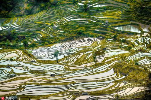 Ruộng bậc thang là cảnh quan văn hóa vô cùng ngoạn mục tại các sườn núi dốc của Ai Lao Sơn cao chót vót và của vực sâu hiểm trở bên sông Hồng. Trong 1.300 năm qua, người dân Hani đã phát triển một hệ thống phức tạp các kênh để đưa nước từ đỉnh núi vào các ruộng bậc thang. Họ cũng đã tạo ra một hệ thống canh tác tổng hợp, chăn nuôi trâu, bò, vịt, cá, lươn và sản xuất lúa gạo đỏ, cây trồng chính của khu vực.