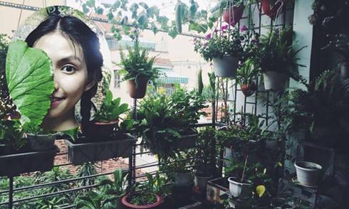 Ban công 'xanh mướt' giữa lòng Sài Gòn của người mẫu Thùy Dương