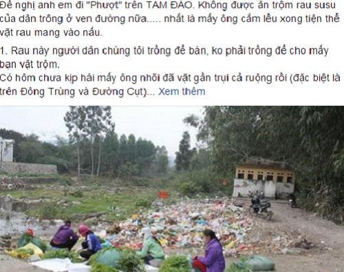 tam-thu-mong-phuot-thu-ngung-trom-rau-vut-rac-o-tam-dao