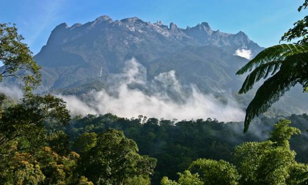 7 trải nghiệm khó quên trên hòn đảo nhiệt đới Borneo