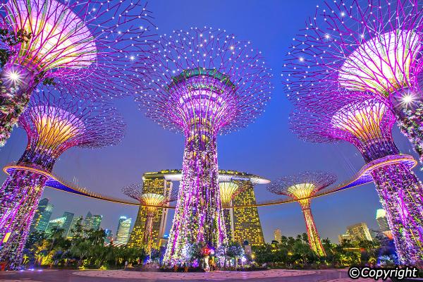 tuoi-than-singapore
