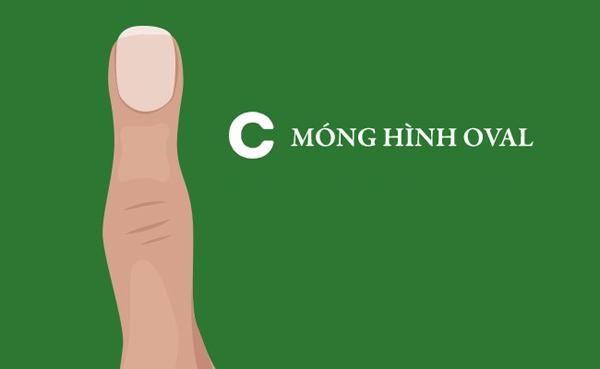 hinh-dang-mong-tay-tiet-lo-gi-ve-ban-2