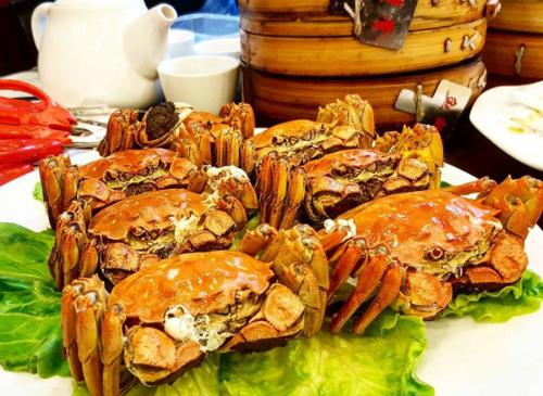 Những trải nghiệm xa xỉ trong chuyến đi Thượng Hải của Ngọc Trinh - ảnh 8