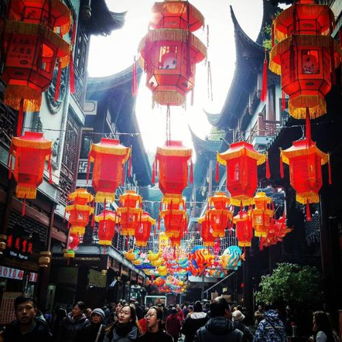 Những trải nghiệm xa xỉ trong chuyến đi Thượng Hải của Ngọc Trinh - ảnh 5