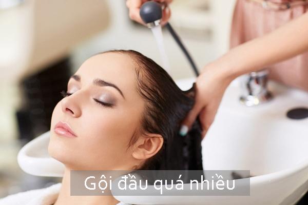 Ngược lại, gội đầu quá nhiều khiến da đầu mất đi lớp dầu dưỡng ẩm, khiến tóc khô và cũng dễ gãy rụng.