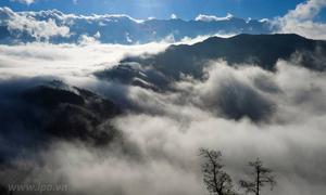 Y Tý bồng bềnh mùa mây
