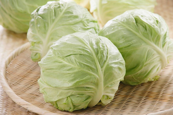 Bắp cải chứa 91,9% là nước, có thể chế biến thành nhiều món ăn ngon.