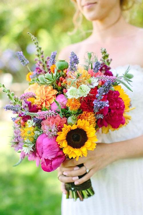 Hoa hướng dương cùng các loại hoa khác