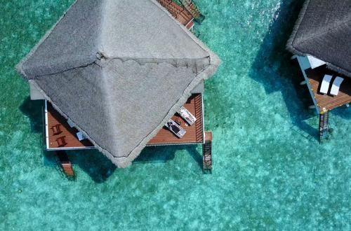 Video ở Maldives của vợ chồng Việt xôn xao cộng đồng phượt thế giới - ảnh 3