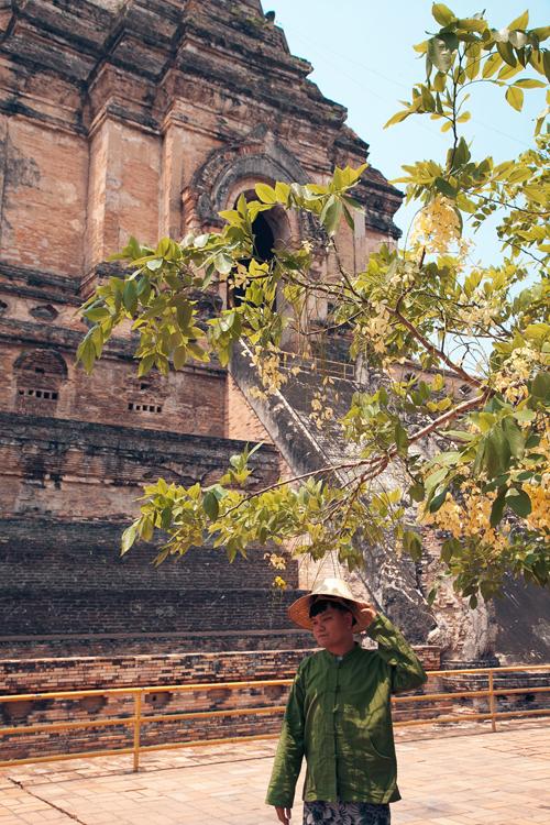 Du khách có thể chiêm ngưỡng rất nhiều đền chiềng cổ kính như ngôi chùa sơn son bọc vàng Wat Prathat rất đẹp ở Doi Su Thep, chùa Wat Chediluang hay chùa Wat Patao lâu đời, đầy cổ kính và bí ẩn.