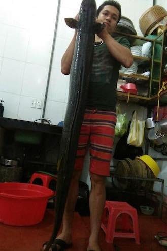 nguoi-dan-nghe-an-bat-duoc-ca-lech-15kg-1