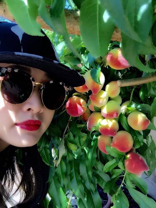 Tình cũ Bằng Kiều khoe vườn cây trái