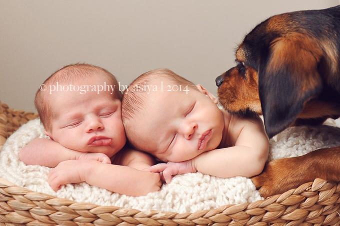 Những bức ảnh có thể khiến bạn muốn đẻ con sinh đôi - ảnh 6