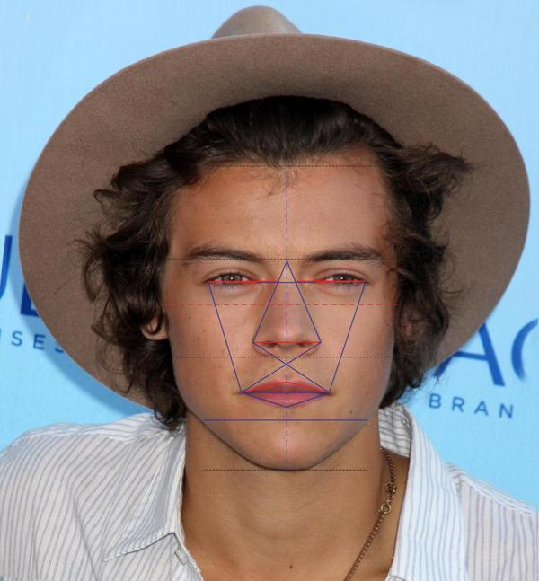 Nam ca sĩ Harry Styles của nhóm One Direction đứng thứ 4 với 89,63%. Trên gương mặt của Harry, chiếc cằm được cho là đẹp hoàn hảo với tỉ lệ gần cán mốc đẹp gần như tuyệt đối - 99,7%.