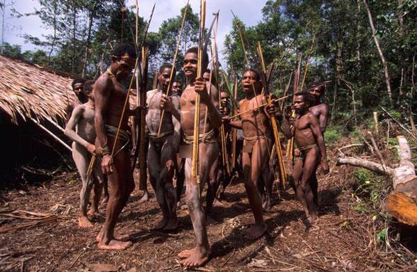 Bộ tộc dựng nhà trên cây, tách biệt khỏi thế giới loài người ở Indonesia