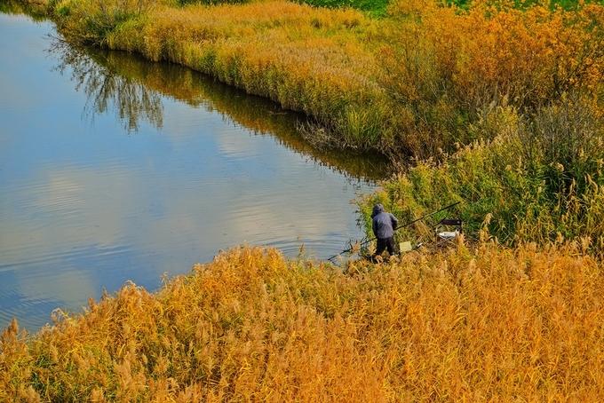 Ba sắc màu tạo nên mùa thu rực rỡ ở Hokkaido