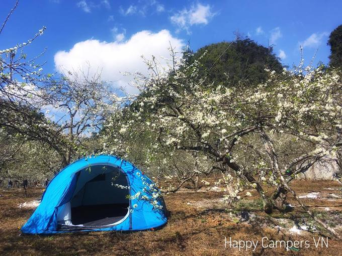 Lên Mộc Châu cắm trại giữa mùa thập lý hoa đào - 2
