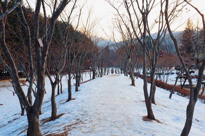 Bộ ảnh Hàn Quốc mùa đông làm xao xuyến chàng trai Việt - 5