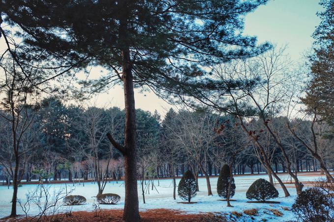 Bộ ảnh Hàn Quốc mùa đông làm xao xuyến chàng trai Việt - 2