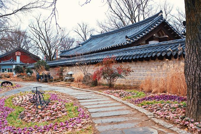 Bộ ảnh Hàn Quốc mùa đông làm xao xuyến chàng trai Việt - 9