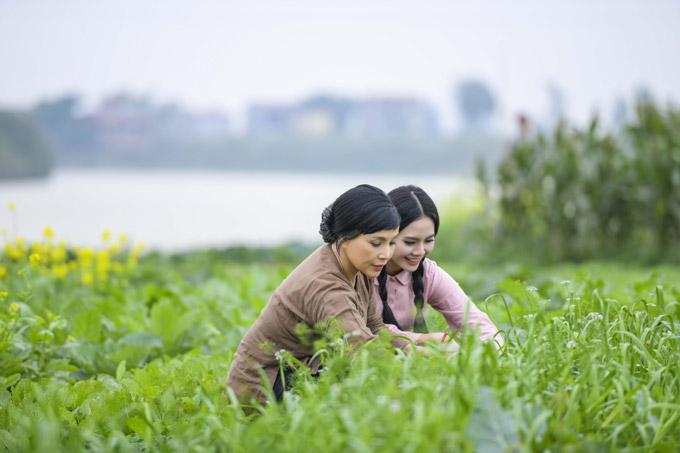 Trong MV Quê mẹ người ơi của Sao Mai Lương Nguyệt Anh, NSND Lan Hương đóng vai người mẹ ở vùng thôn quê của nữ ca sĩ. Đây là lần hiếm hoiEm bé Hà Nội tham gia minh họa cho MV ca nhạc. Với phim ảnh, chị cũng lựa chọn kỹ lưỡng kịch bản. Hiện tại chị làm công tác giảng dạy trong lĩnh vực đạo diễn, đào tạo các tài năng trẻ.