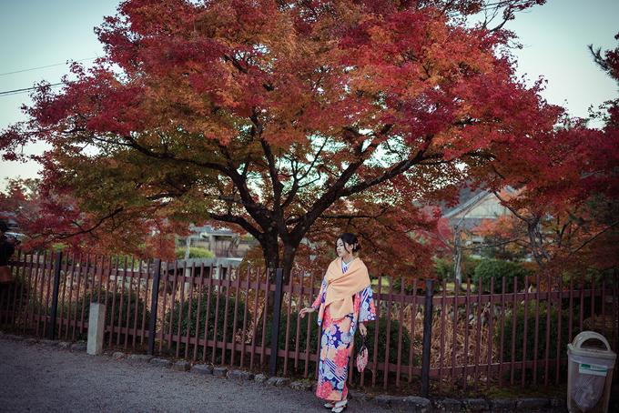 Á hậu cao nhất Việt Nam trễ nải vai trần ở Nhật Bản - ảnh 7