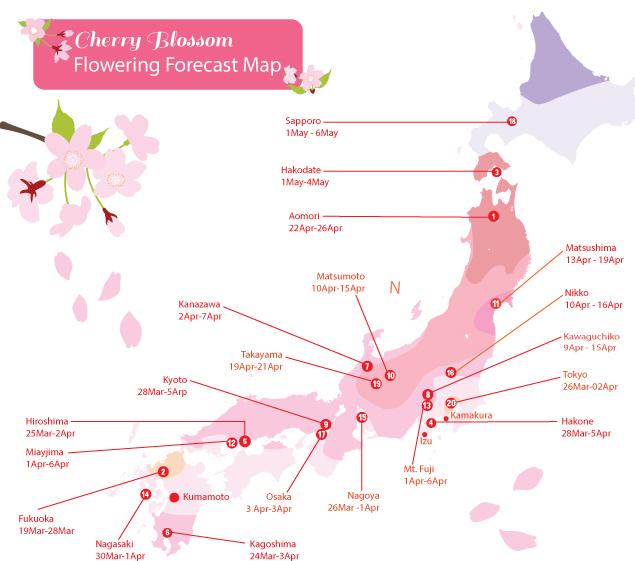 Dự báo hoa anh đào nở ở Hàn Quốc và Nhật Bản năm nay - 1