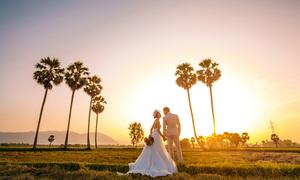 Uyên ương dành 4 năm để chụp ảnh cưới ở mọi miền đất nước