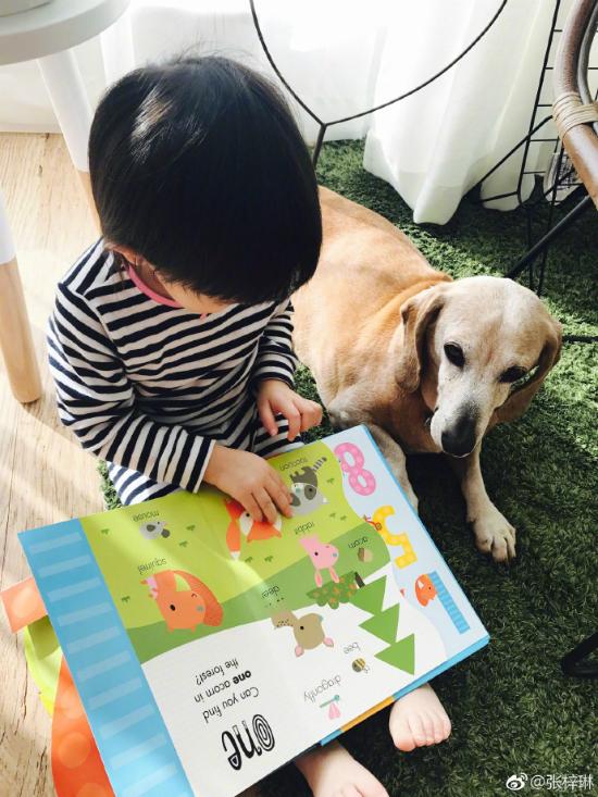 Em béđã bắtđầu thích thú với những cuốn sách nhiều sắc màu...