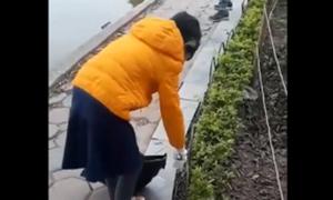 Bé gái 9 tuổi dọn rác hồ Gươm mỗi sáng cuối tuần