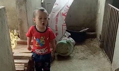 Bé trai 3 tuổi đứng cãi nhau tay đôi với chó